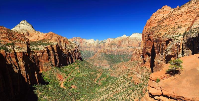 De canion overziet, Zion National Park, Utah stock foto