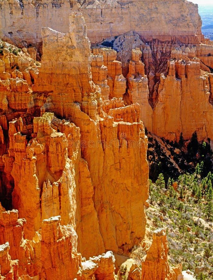 De Canion van Bryce in Utah stock foto's