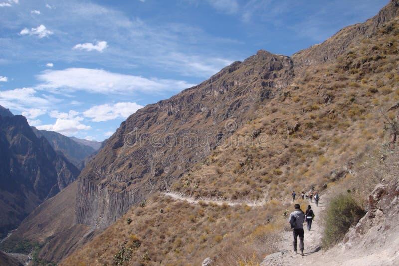 De Canion van Colca stock fotografie