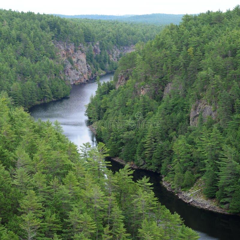 De Canion van de baron, Ontario stock fotografie