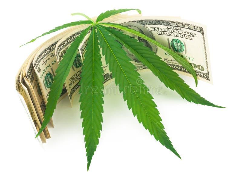De cannabis en het geld stock foto's