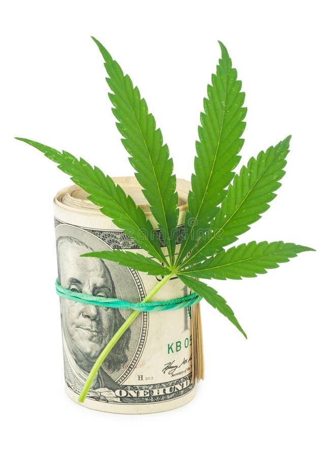 De cannabis en het geld stock foto