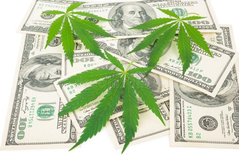 De cannabis en het geld stock afbeelding