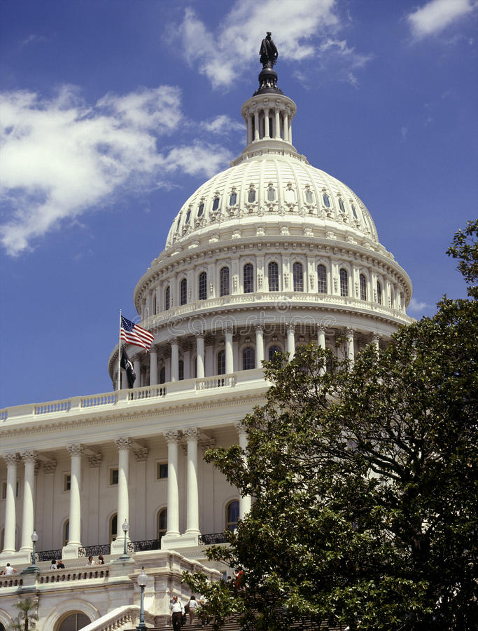 De Capitoolbouw - Washington DC - Verenigde Staten stock fotografie