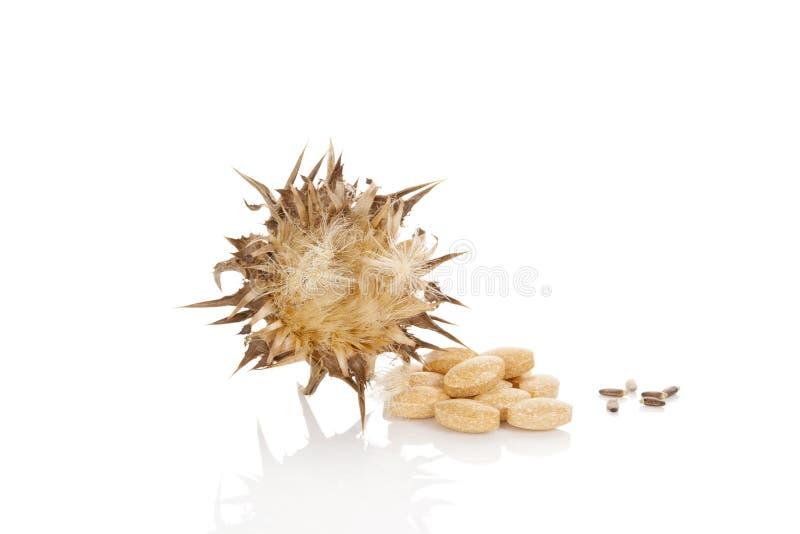De capsules van Silybummarianum stock foto