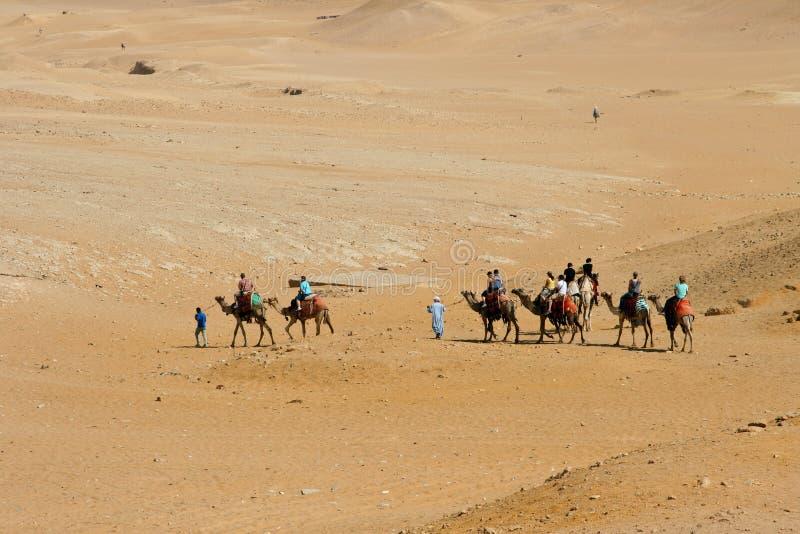 De caravan van de kameel stock afbeeldingen