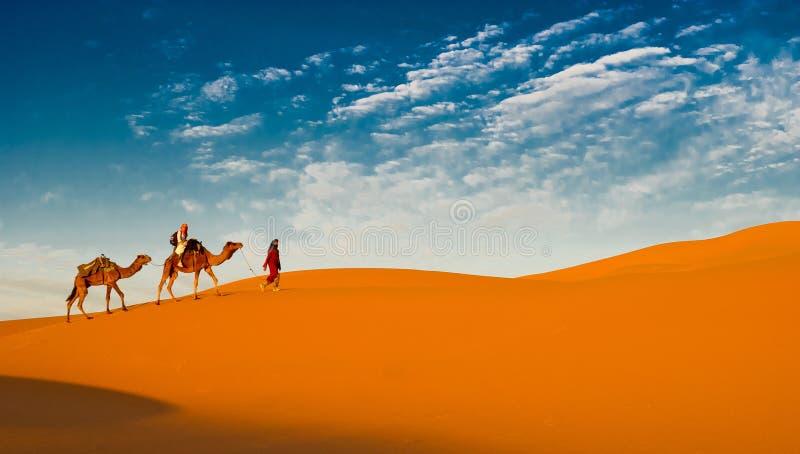 De caravan van de kameel in de de Sahara woestijn