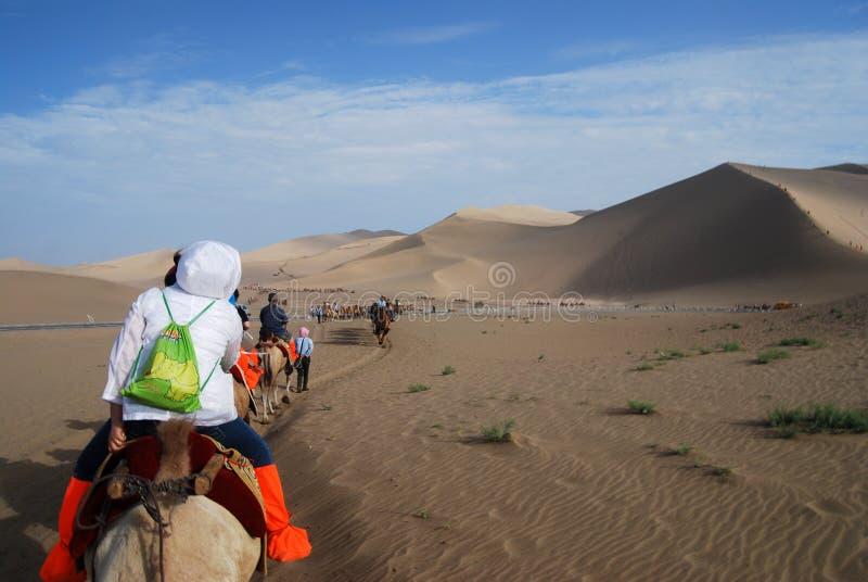 De caravan van de kameel in de woestijn royalty-vrije stock fotografie