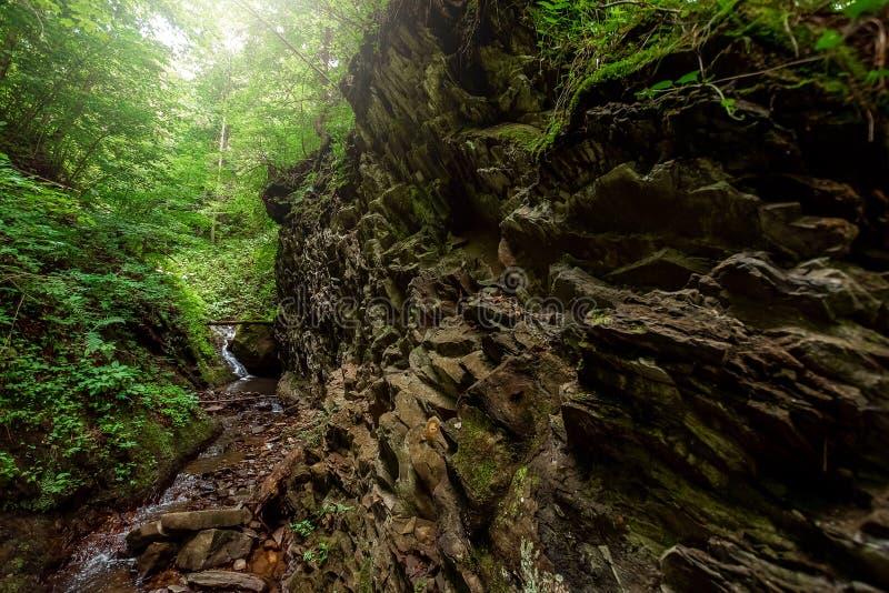 De cascade van dalingen van een de koude rivierwaterval op stenen, drapeert op een bergrivier Het concept actieve vakantie, vakan stock foto