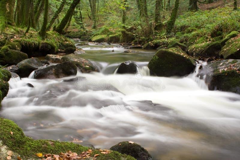 De cascade van de rivier stock afbeelding