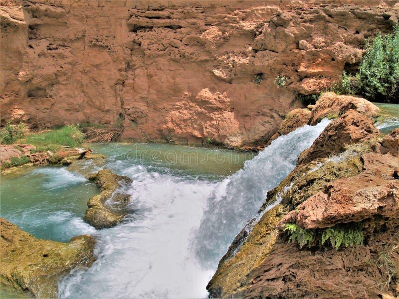 De Cascades van de Havasukreek onder Mooney-Dalingen royalty-vrije stock foto's