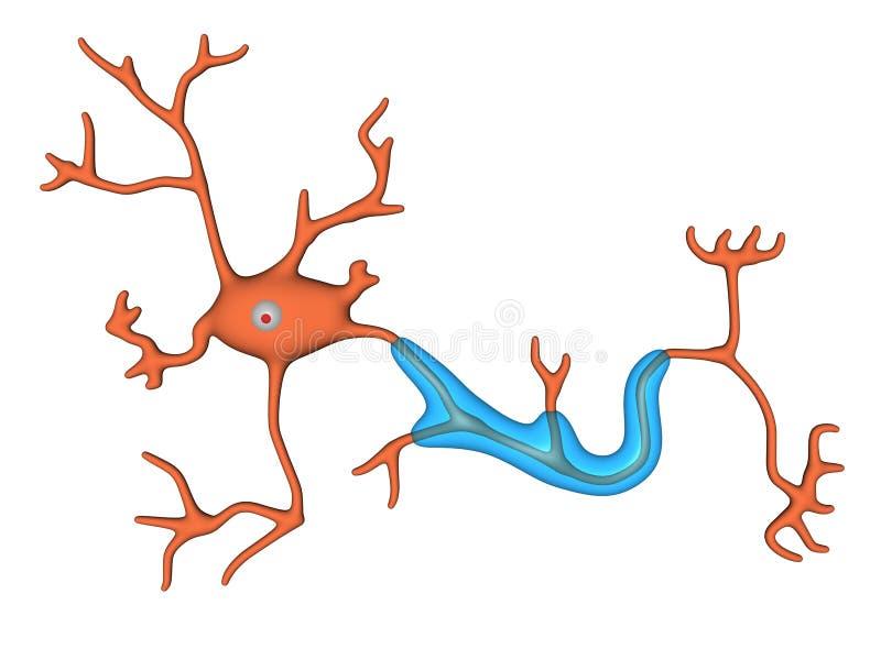 De cel van de zenuw vector illustratie