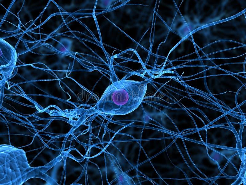 De cellen van de zenuw vector illustratie