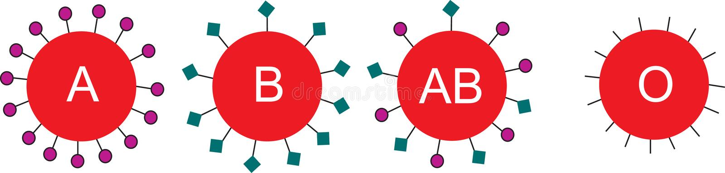 De cellen van het bloed stock illustratie