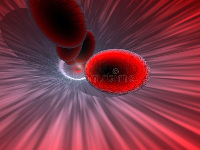 De Cellen van het bloed royalty-vrije illustratie