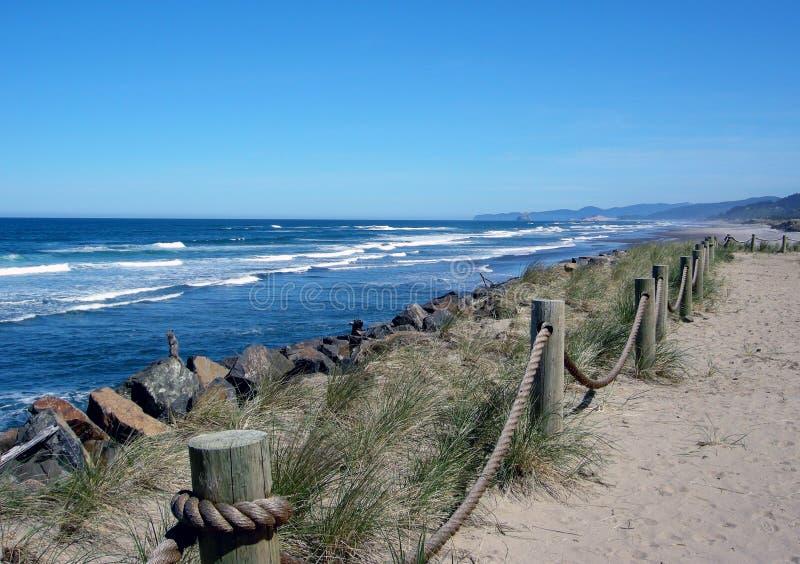 De centrale kust van Oregon stock afbeelding