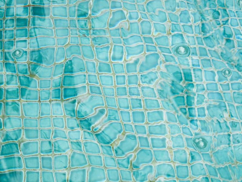 De ceramiektegels van Aqua onderwater stock fotografie