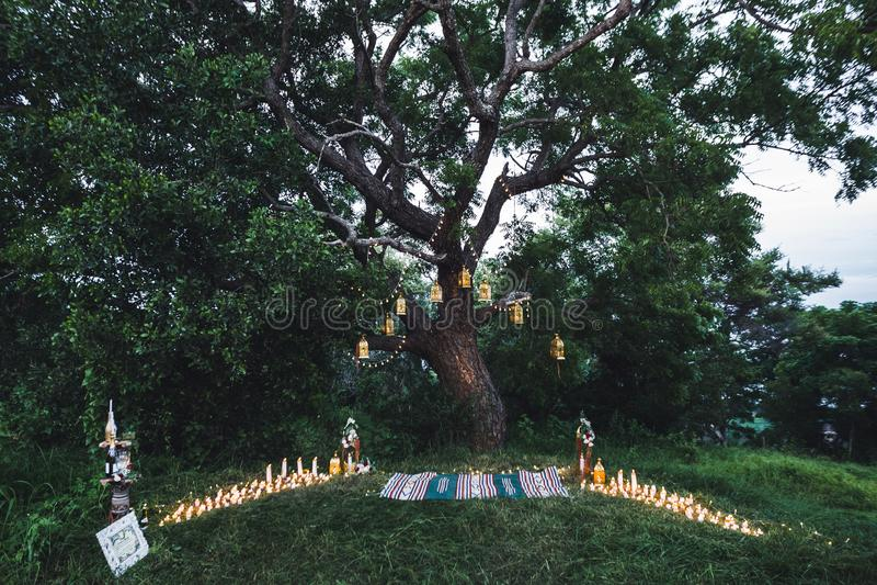 De ceremonie van het nachthuwelijk met uitstekende lampen op boom royalty-vrije stock foto