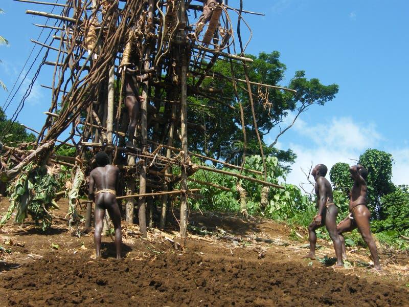 De ceremonie van inwoners in Vanuatu royalty-vrije stock foto