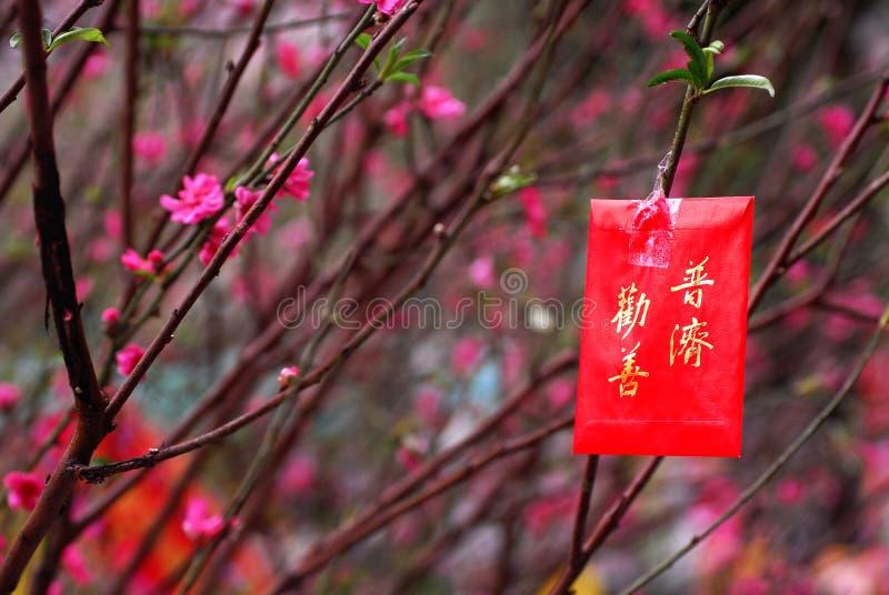 De Chinese beelden van het Nieuwjaar royalty-vrije stock fotografie