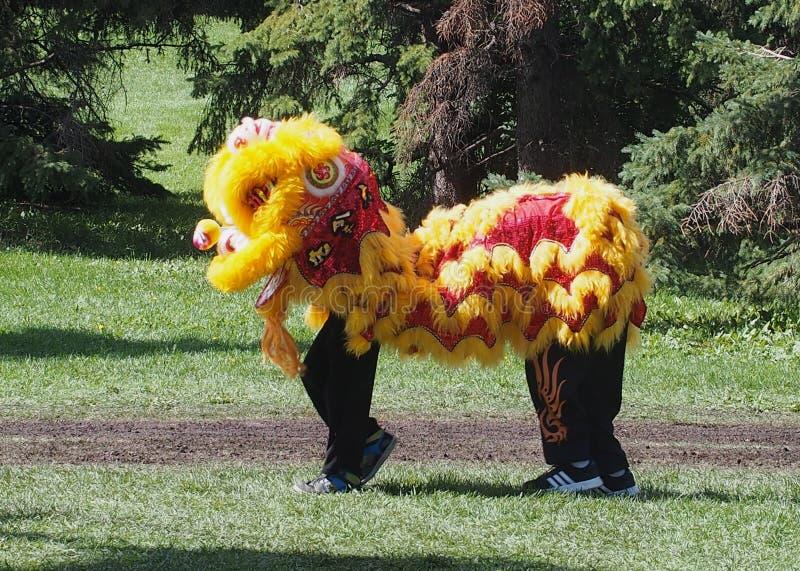 De Chinese Dansers van de Leeuw stock fotografie
