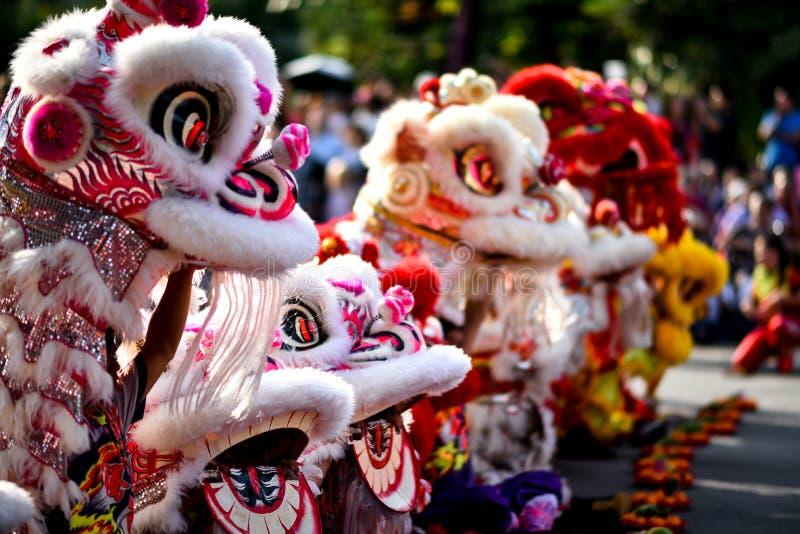 De Chinese fundamentele bewegingen van de leeuwdans kunnen in Chinese vechtsporten worden gevonden stock afbeeldingen