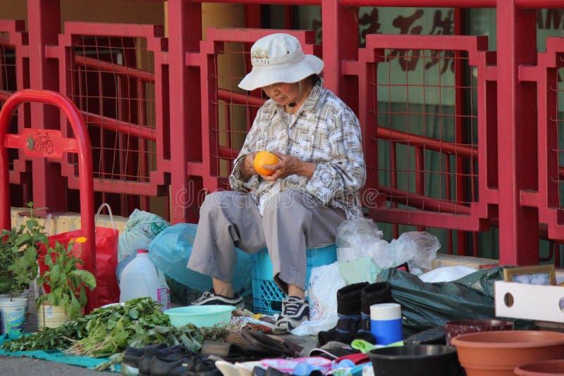 De Chinese Groenten van de Vrouwen Verkopende Tuin royalty-vrije stock foto's