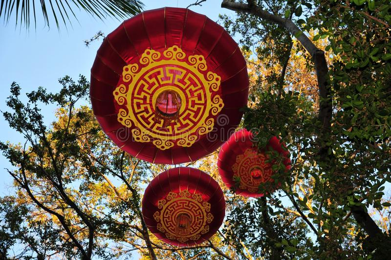 De Chinese hangende lantaarns van de Nieuwjaar traditionele decoratie op een boom stock foto