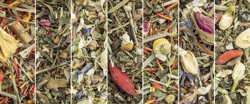 De Chinese kruidencollage van de mengselthee royalty-vrije stock afbeelding