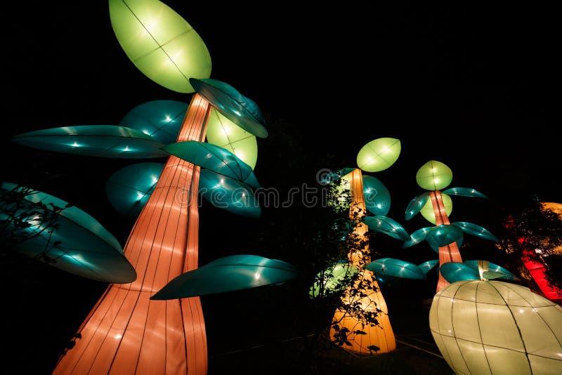 De Chinese lantaarn toont royalty-vrije stock foto's