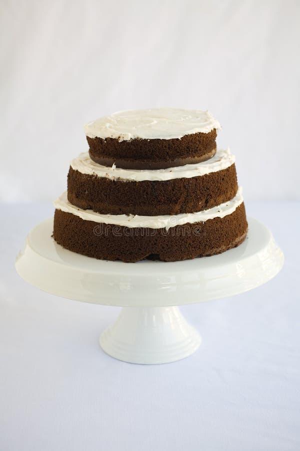 De Chocolade van de cake stock foto's
