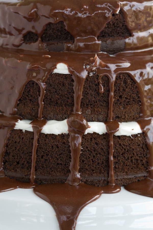 De Chocolade van de cake stock afbeelding