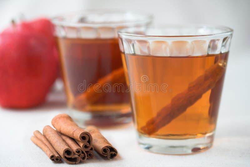 De cider van de appel met kaneel stock fotografie