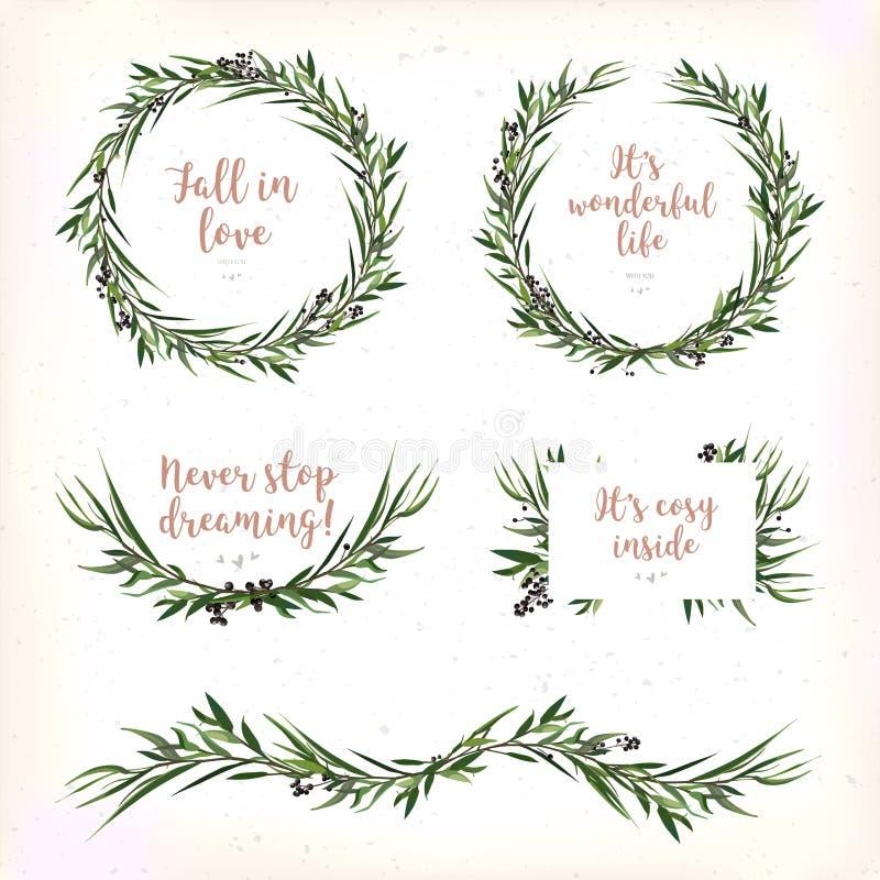 De cirkel van eucalyptusbladeren om Groene de bessentak van de bladkroon is royalty-vrije illustratie