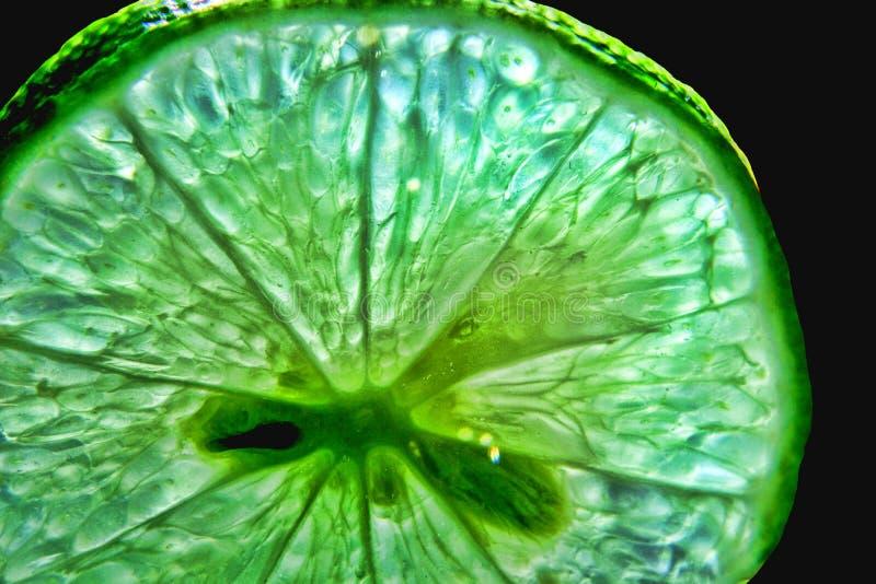 De citroen sneed hoog contrast royalty-vrije stock afbeeldingen
