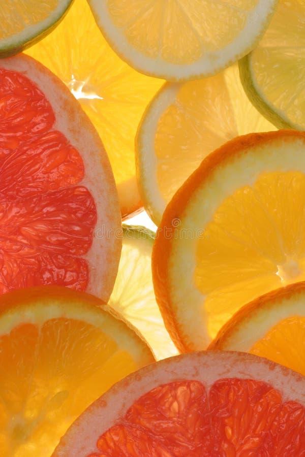 De citrusvrucht snijdt yummy vitaminen royalty-vrije stock afbeelding