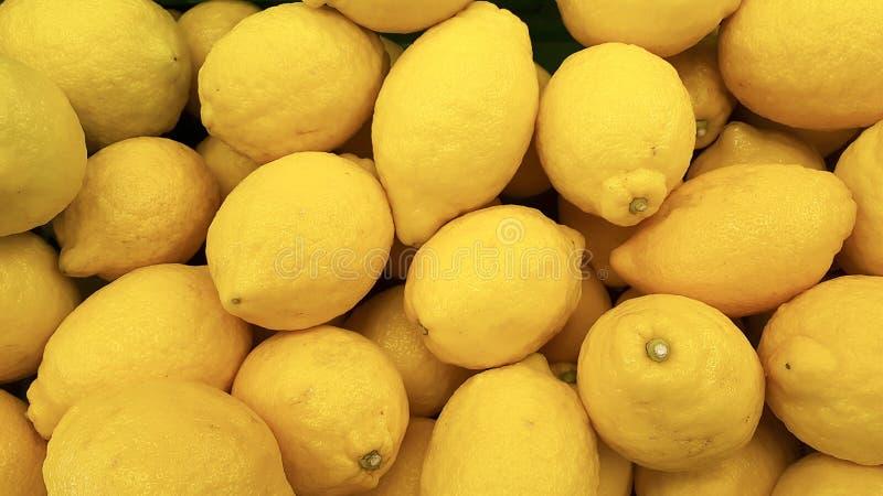 De citrusvrucht van de Limoncitroen royalty-vrije stock fotografie