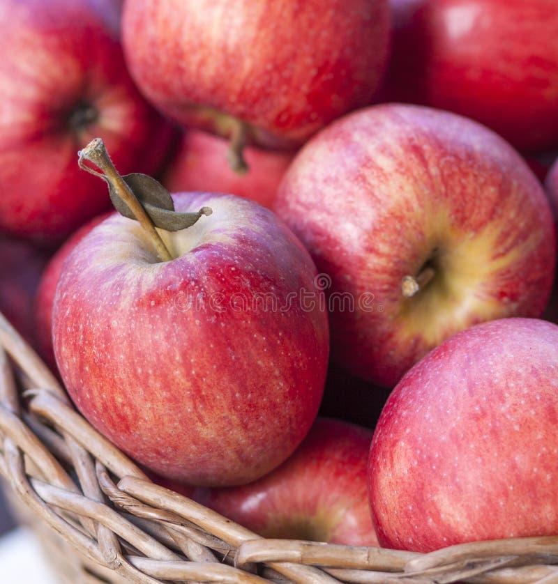 De close-up van appelen stock afbeeldingen