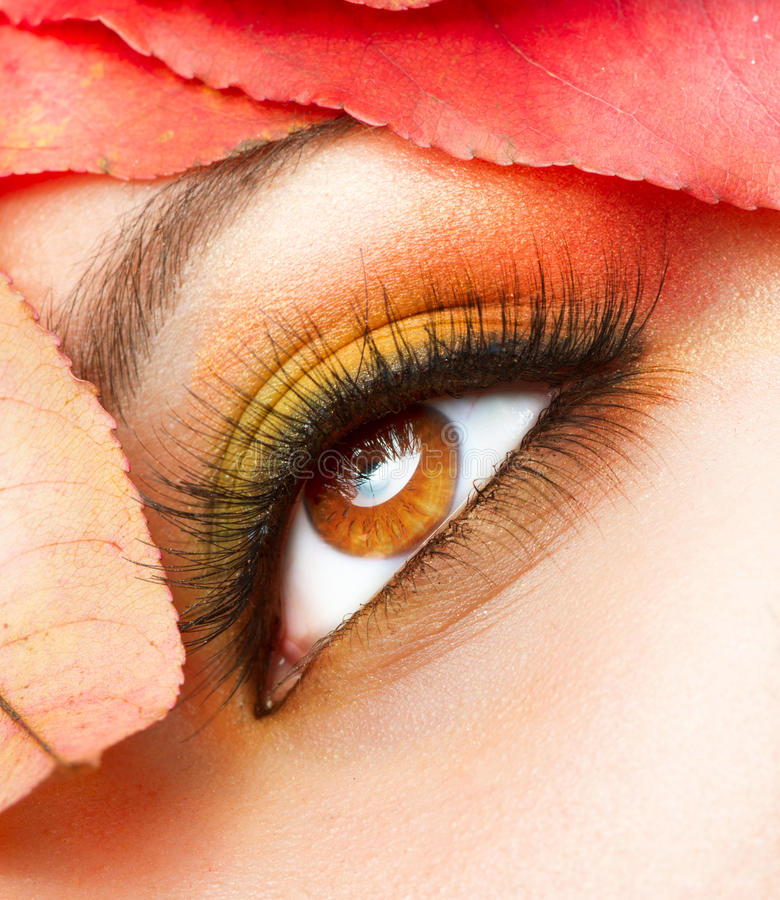 De Close-up van de Make-up van de herfst royalty-vrije stock fotografie