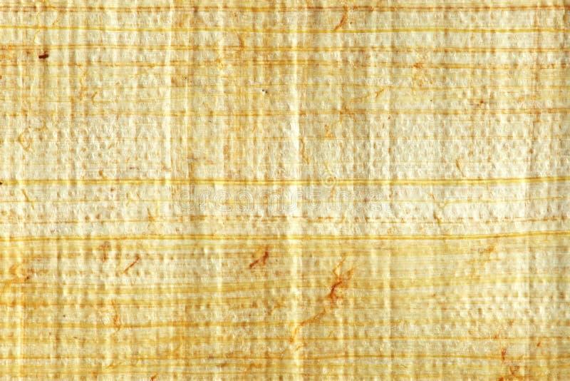 De close-up van de papyrus royalty-vrije stock afbeelding