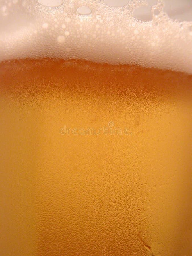 De close-up van het bier stock afbeeldingen