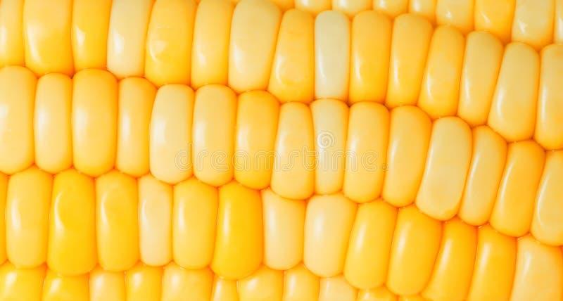 De close-up van het graan royalty-vrije stock afbeeldingen