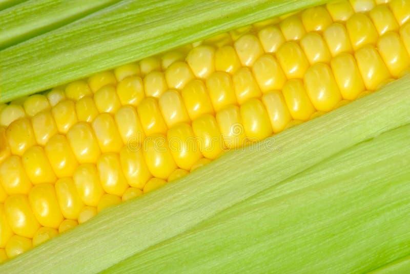 De close-up van het graan royalty-vrije stock fotografie