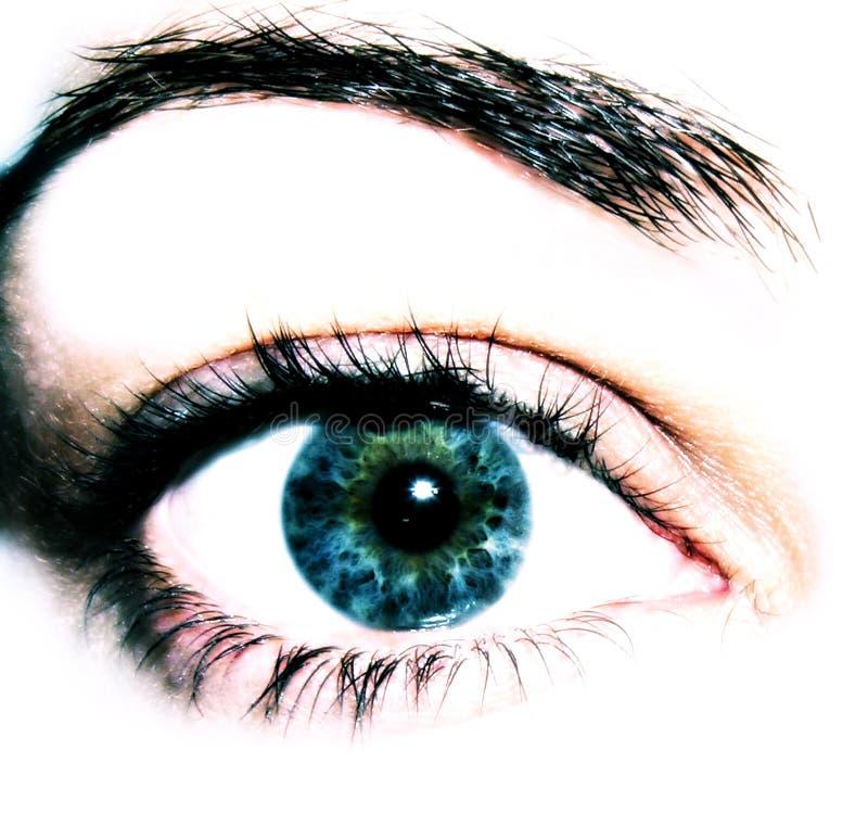 Download De Close-up van het oog stock afbeelding. Afbeelding bestaande uit looking - 2465