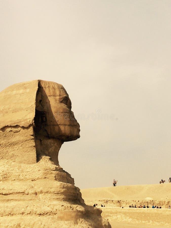 De Close-up van het sfinx zijaanzicht, de Reis van Kaïro, Egypte stock foto