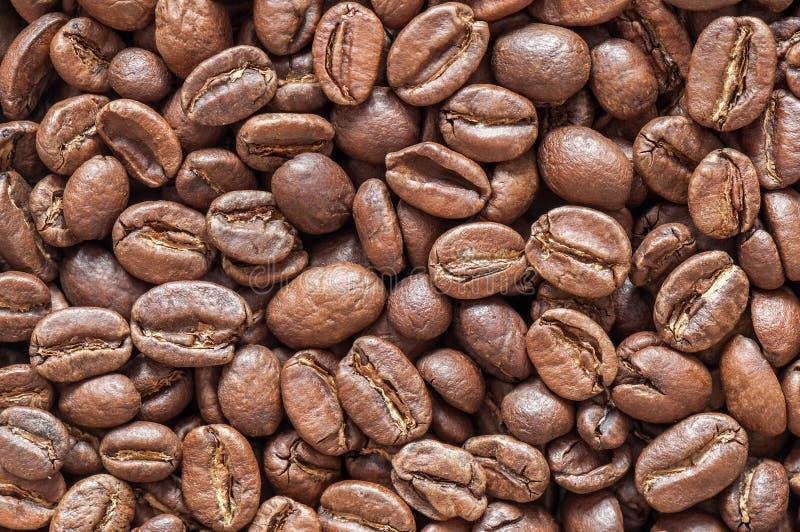 De Close-uptextuur van koffiebonen Achtergrond royalty-vrije stock afbeeldingen