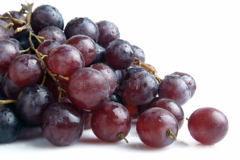 De cluster van de druif stock fotografie