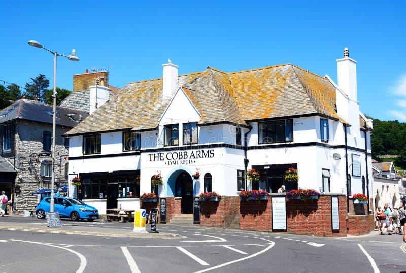 De Cobb armarna, Lyme Regis arkivfoton