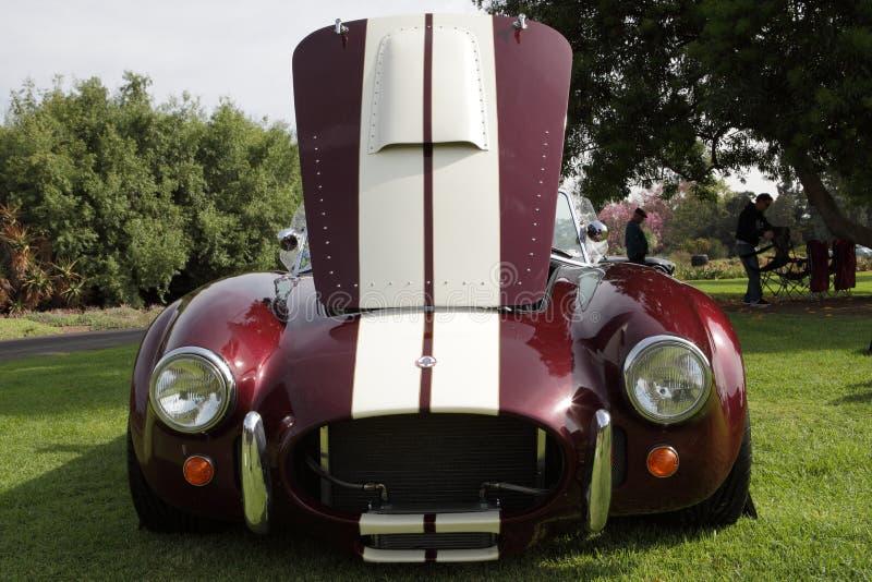 De Cobra's van Shelby bij het Arboretum van Los Angeles royalty-vrije stock afbeelding