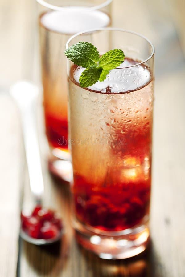 De cocktail van de granaatappel stock afbeelding